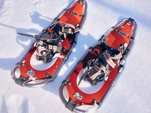 Schneeschuh Touren auf der Alp Egg