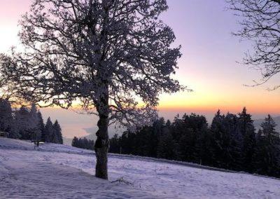 Alp Egg Aussicht im Winter auf Zürichsee